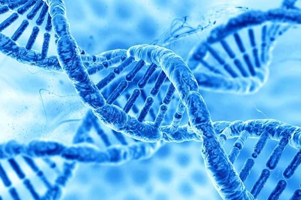 is multiple sclerosis hereditary